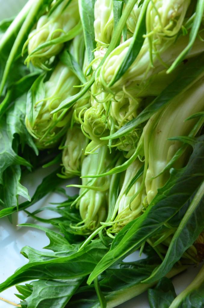 ArtiPunta-Salat-03