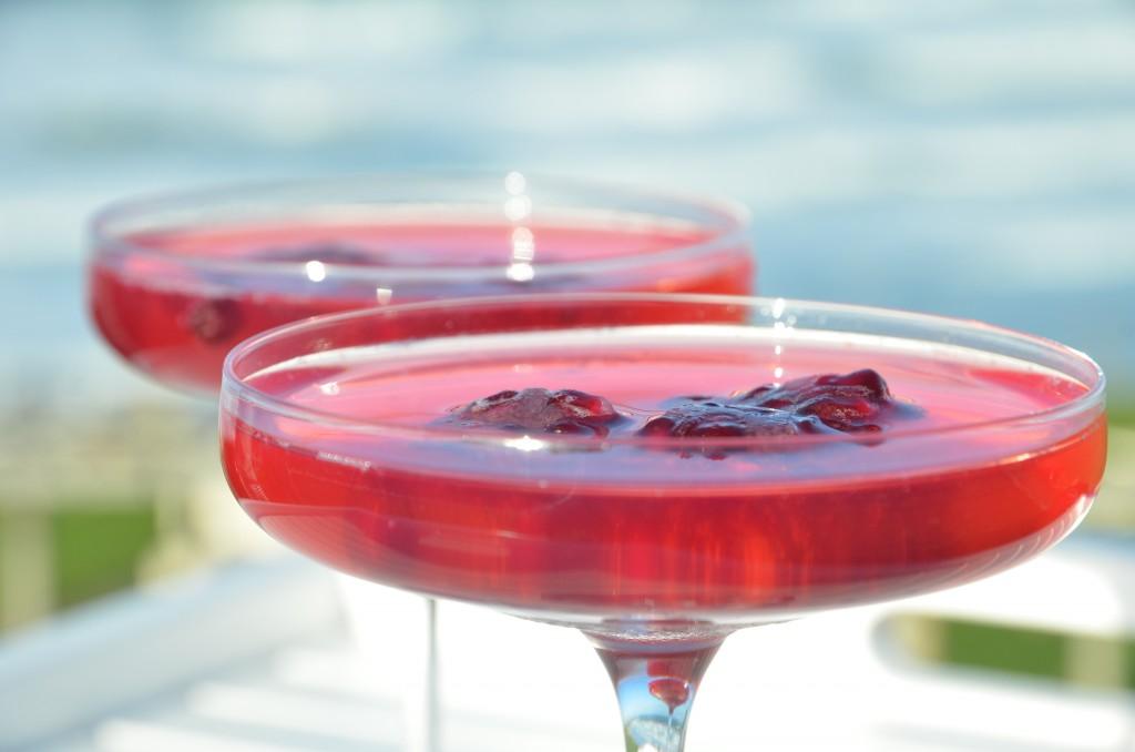 Pink-Gin-04