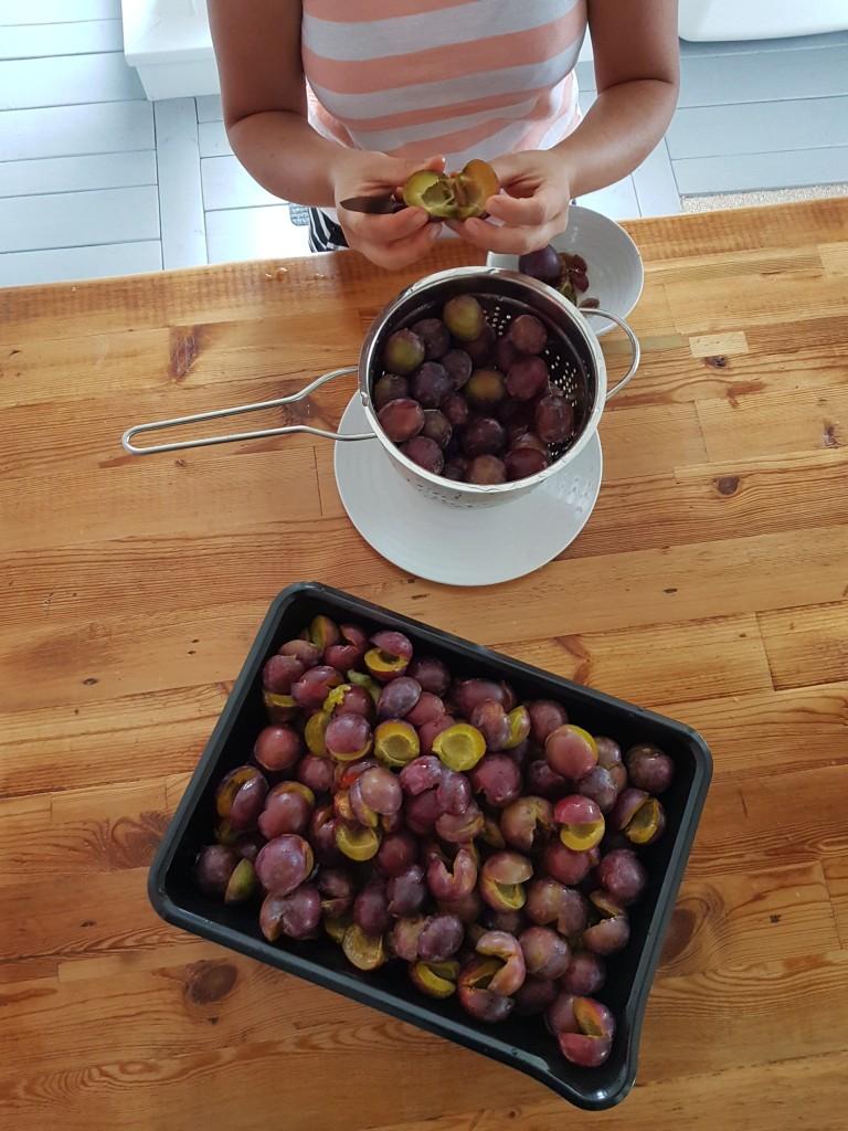 plum-porridge-04