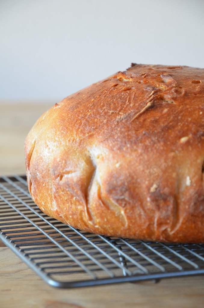 no-knead-bread-02