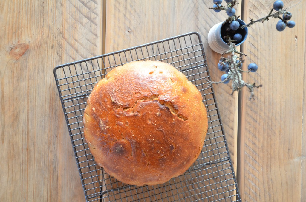 no-knead-bread-03