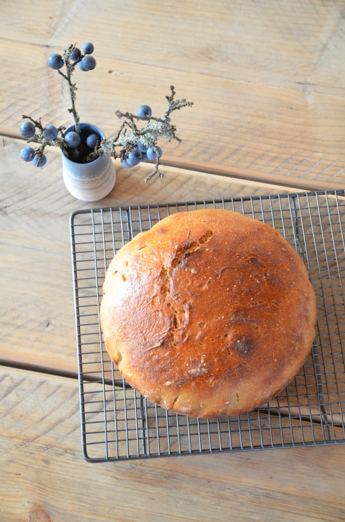 no-knead-bread-05