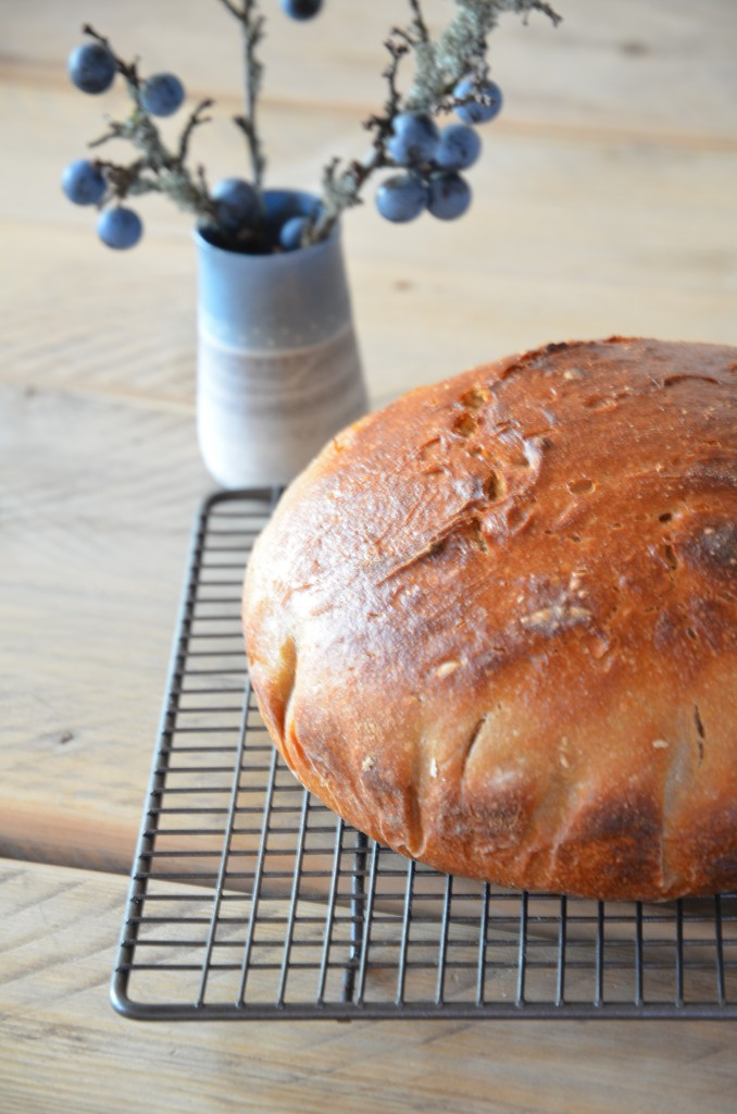 no-knead-bread-06
